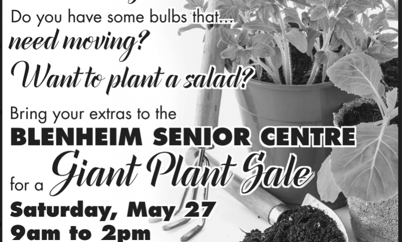 plant sale to2017